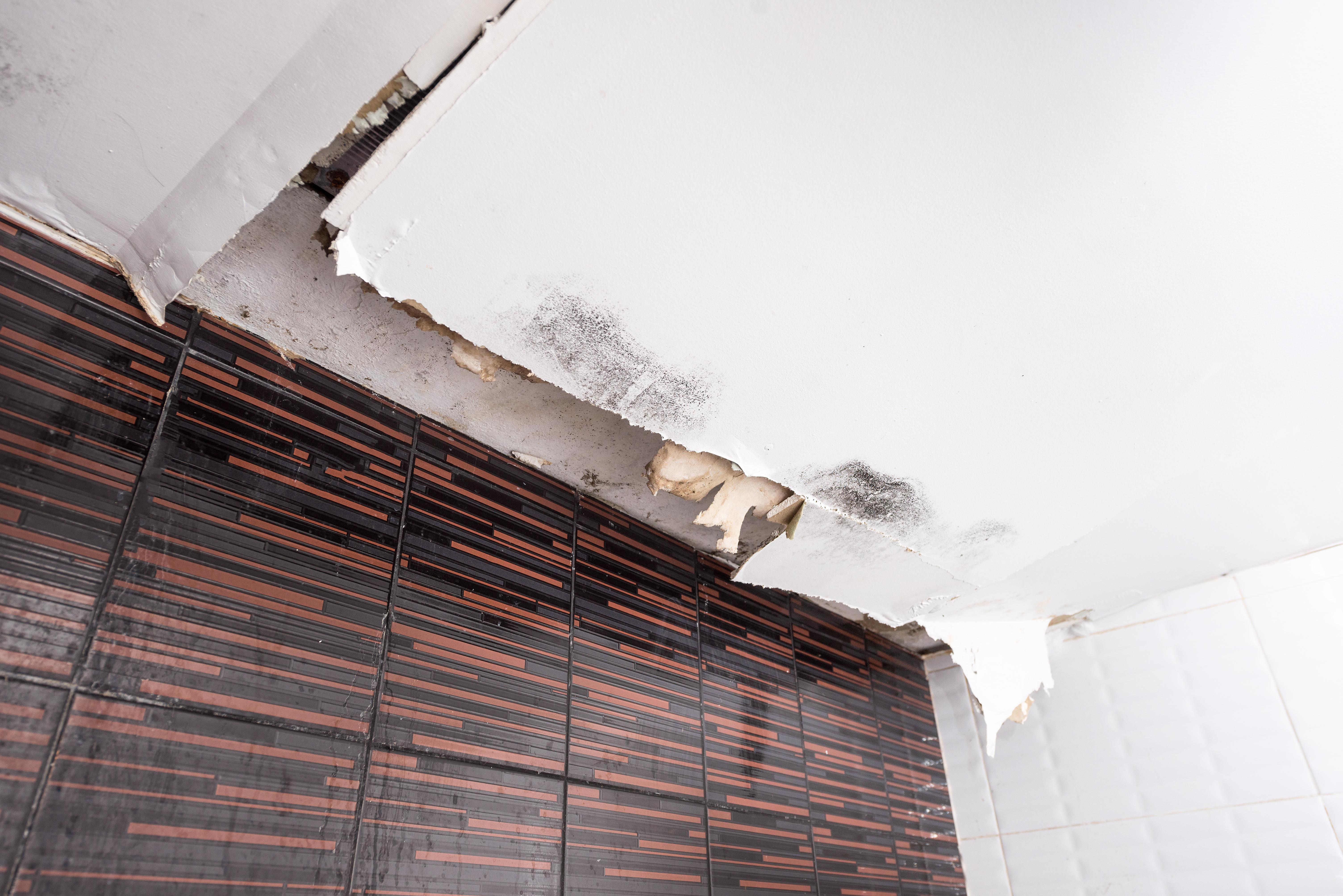 天井からの水漏れイメージ