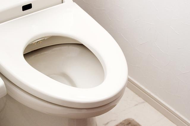 トイレが詰まる時ってどんな時?